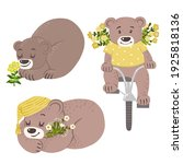 cute bears with yellow flowers... | Shutterstock .eps vector #1925818136