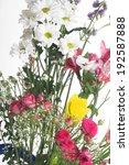 bouquet of flowers on light... | Shutterstock . vector #192587888