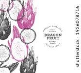 hand drawn dragon fruit design... | Shutterstock .eps vector #1926078716