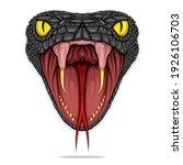 head of black mamba snake... | Shutterstock .eps vector #1926106703