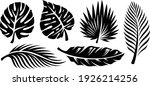 set of palm leaves silhouettes... | Shutterstock .eps vector #1926214256