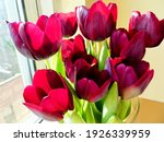Large Vase With Deep Red Tulips
