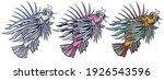 lion fish. underwater tropical... | Shutterstock .eps vector #1926543596