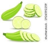 zucchini is fresh. squash whole ... | Shutterstock .eps vector #1926592259