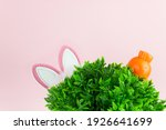 Easter Photo With Grass  Rabbit ...