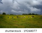 rural landscape with cloudy sky ... | Shutterstock . vector #19268077