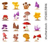 colorful forest wild collection ... | Shutterstock .eps vector #1926815846