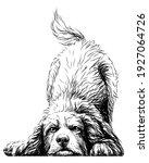 playing dog. wall sticker.... | Shutterstock .eps vector #1927064726