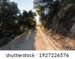 Morning view of Mt Lukens Truck Trail fire road in the San Gabriel Mountains near Pasadena and Los Angeles California.