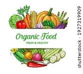 farm vegetable vector frame... | Shutterstock .eps vector #1927319909