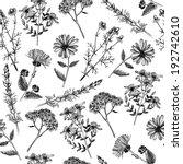 aromatherapy,art,bitter,black,blackberry,botany,calendula,chamomile,drawing,drawn,drug,elecampane,extract,floral,garden