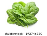 Green Spinach Leaves On White...