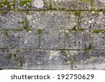 Green Moss On Ancient Exterior...