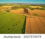 Aerial View Of Pastures And...