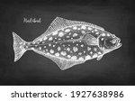 flatfish. chalk sketch of... | Shutterstock .eps vector #1927638986
