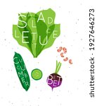 set of color vegetables with... | Shutterstock .eps vector #1927646273