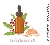 sandalwood essential  oil amber ...   Shutterstock .eps vector #1927719299