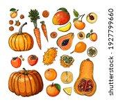orange. vector food. colored... | Shutterstock .eps vector #1927799660