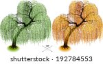 willow tree. isometric trees in ... | Shutterstock .eps vector #192784553
