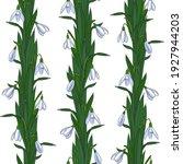 decorative weaving of snowdrops ... | Shutterstock .eps vector #1927944203