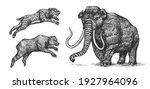 mammoth or extinct elephant ...   Shutterstock .eps vector #1927964096