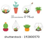 terrariums  and plants... | Shutterstock .eps vector #192800570