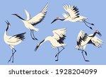 crane birds collection isolated ... | Shutterstock .eps vector #1928204099