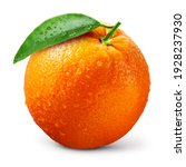 Small photo of Orange fruit isolate. Orange citrus with drops on white background. Whole wet orange fruit with leaves. Full depth of field.