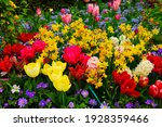 floral background   fresh...   Shutterstock . vector #1928359466