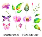 Watercolor Flowers Leafs And...