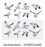 set of seagulls outlines. hand... | Shutterstock .eps vector #1928521640