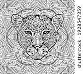 Patterned Leopard  Puma ...
