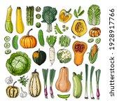 set of vegetables vector food....   Shutterstock .eps vector #1928917766