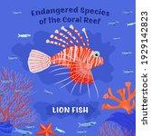 coral reef inhabitants.... | Shutterstock .eps vector #1929142823