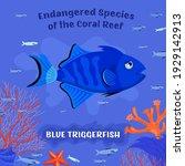 coral reef inhabitants.... | Shutterstock .eps vector #1929142913