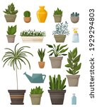 collection of plants.... | Shutterstock .eps vector #1929294803