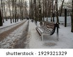 Snow Covered Park Path And...