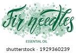 vector illustration of fir... | Shutterstock .eps vector #1929360239