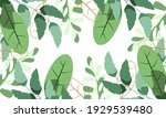 nature flowers and leaves... | Shutterstock .eps vector #1929539480