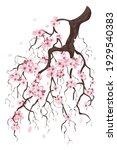 flower on white background... | Shutterstock .eps vector #1929540383