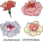 set of flower vector for... | Shutterstock .eps vector #1929553826