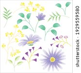 daisy and its leaves set | Shutterstock .eps vector #1929559580