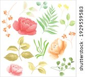 peonies and leaves set floral... | Shutterstock .eps vector #1929559583