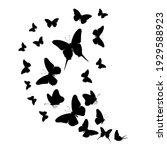flock of silhouette black... | Shutterstock .eps vector #1929588923
