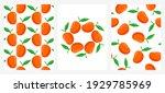 vector set of seamless patterns ... | Shutterstock .eps vector #1929785969