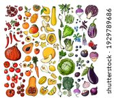rainbow vegetables and fruits ... | Shutterstock .eps vector #1929789686