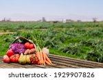 Burlap Bag Full Of Vegetables...