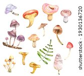 cute coloured fairy mushrooms....   Shutterstock . vector #1930136720