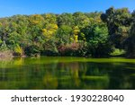 Idyllic Green Nature With Lake...