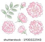 set of hand drawn rose flowers | Shutterstock .eps vector #1930322543